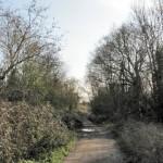 Woodcock Lane looking south